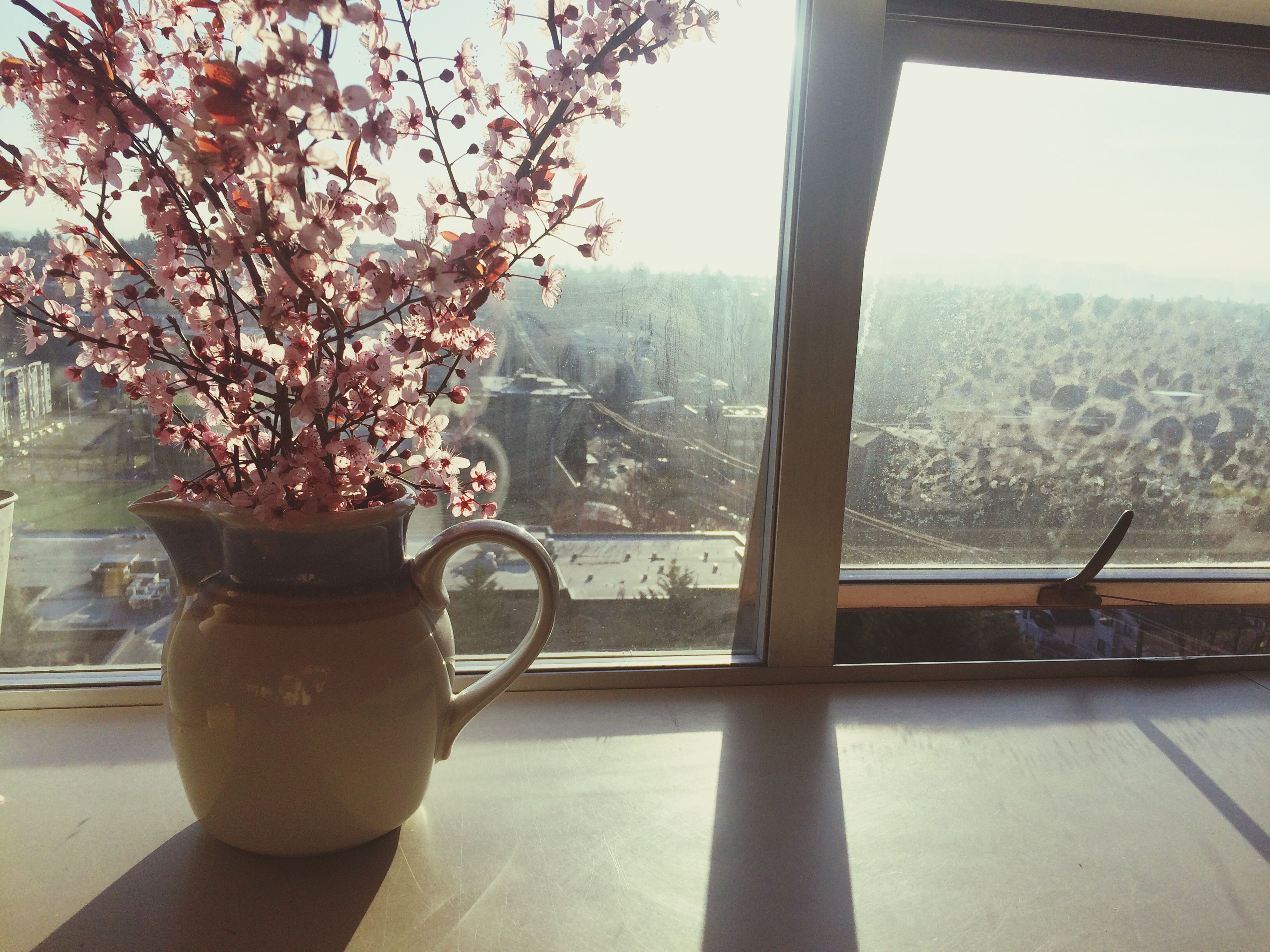 indoors, window, table, glass - material, transparent, built structure, architecture, plant, flower, chair, water, potted plant, day, growth, building exterior, window sill, sunlight, railing, home interior, clear sky