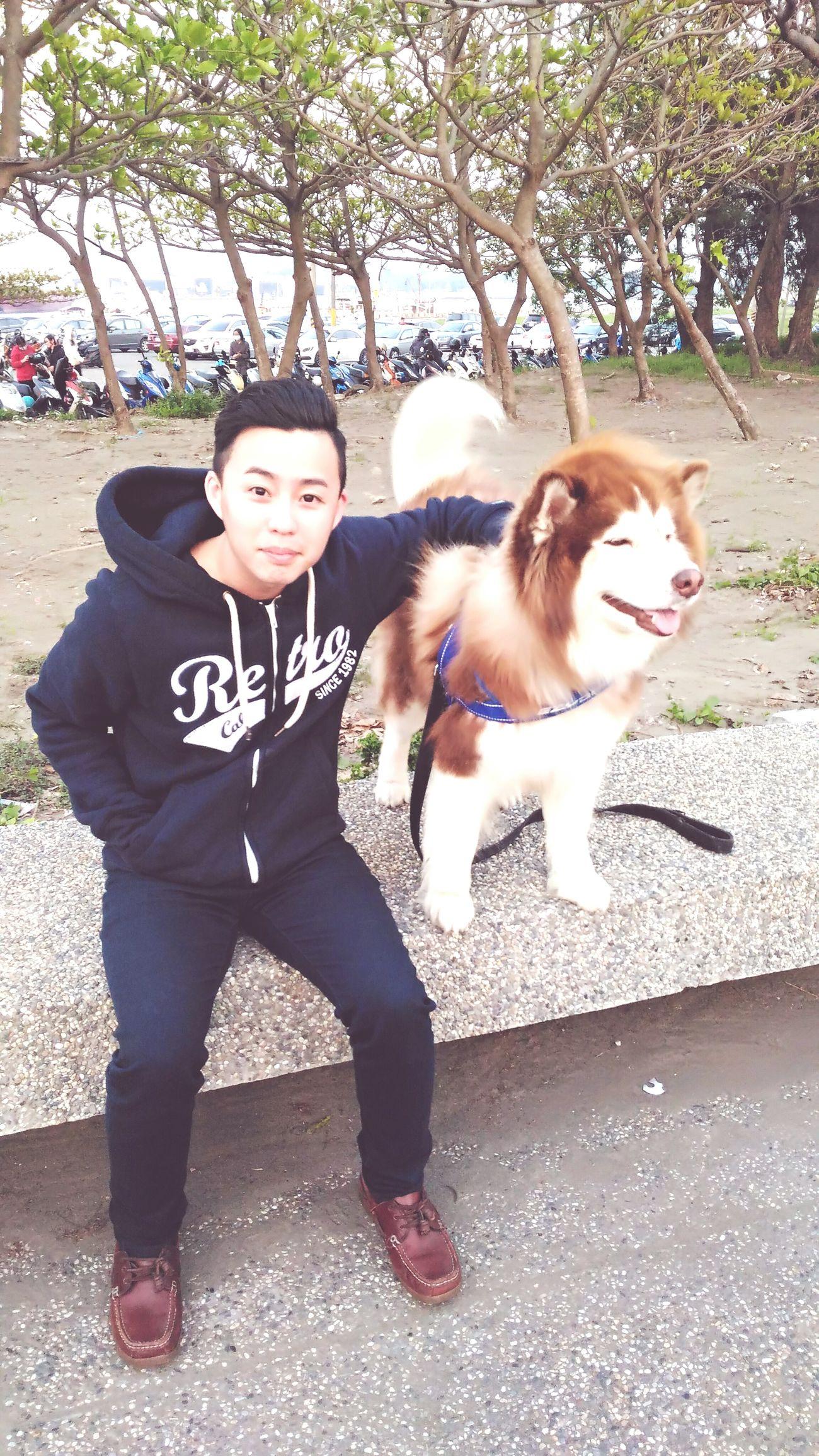臺南 Dogslife Dog Life Dog