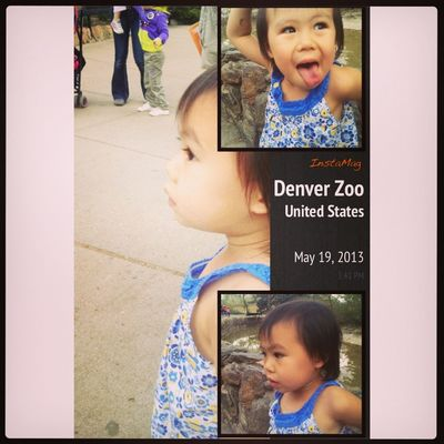 Playing with the animals at Denver Zoo by Elissa Yamagata