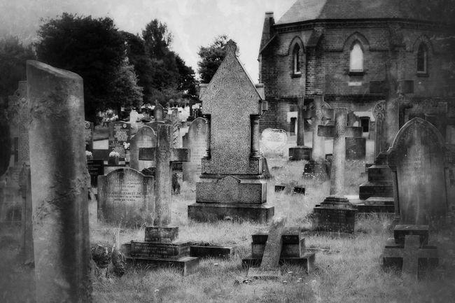 My Unique Style Bw_collection Eye4photography  Blancoynegro Graveyard Beauty Graveyard Noir Et Blanc Black&white Monochrome Cemetery Black & White Photography Blackandwhite Landscape Darkart