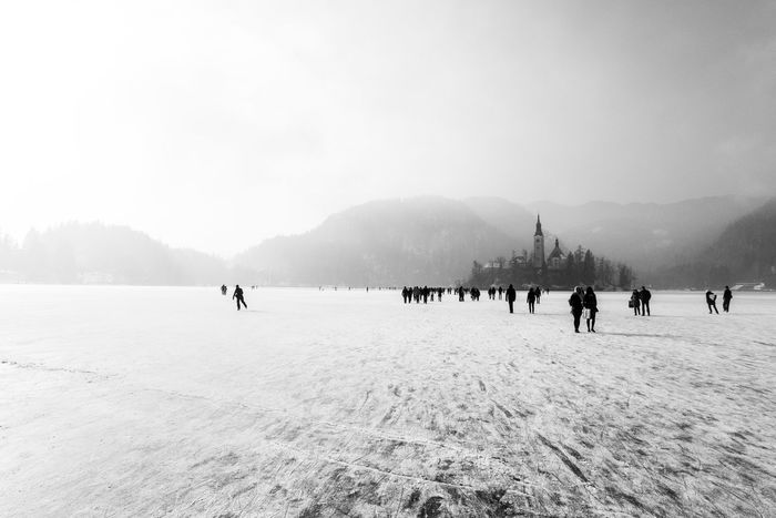 Winter wonderland in Bled. Bled Bled Lake Slovenia Ice Skating ✌ Slovenia Trees Winter Blackandwhite Cold Temperature Day Iceskating Island Lake Nature Outdoors Skating Slovenija Snow