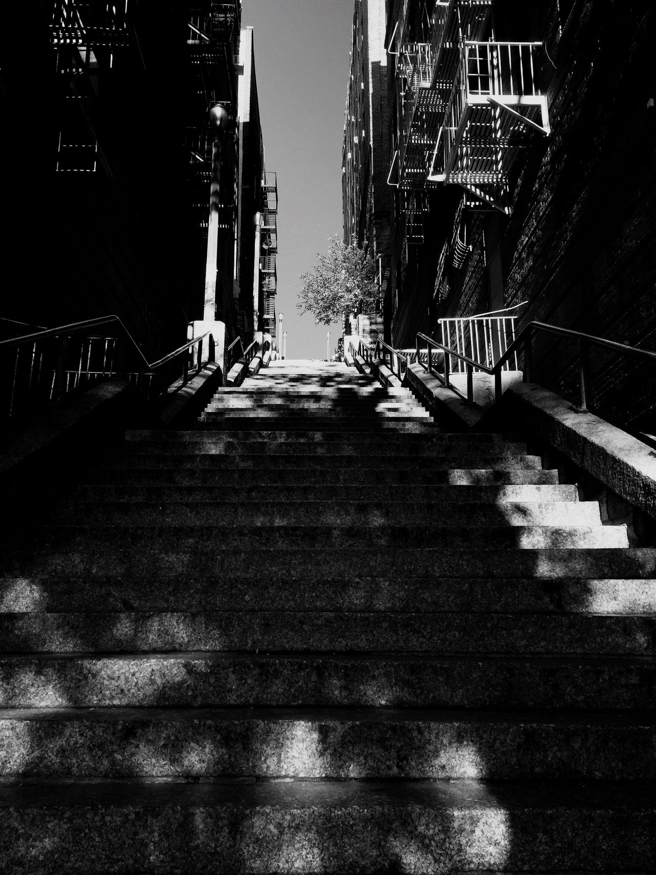 Steps And Staircases NYC Weightloss Bronx New York  Bronx City Eye4photography  EyeEm Best Shots EyeEm Gallery Architecture Highstep Ny New York City