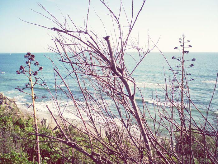 Sea Seascape Marii Sunday