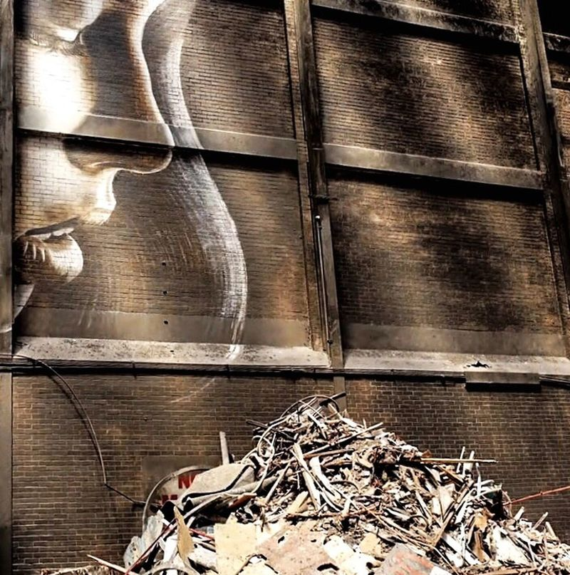 Photographic Approximation Type Faces The World Is Full Of Colourful Lies... Toxic Future Facial Experiments Abandoned Buildings Rone Murals Of Melbourne Spleen D'automne