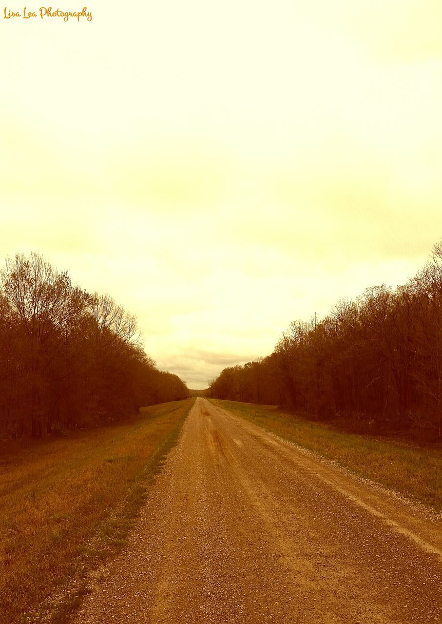 road, the way forward, diminishing perspective, nature, landscape, scenics, sky, tranquil scene, tree, no people, transportation, outdoors, sunset, tranquility, beauty in nature, grass, day