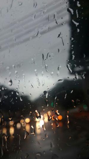 비오는 날. 기분좋은. 비나 죽죽 내려라.