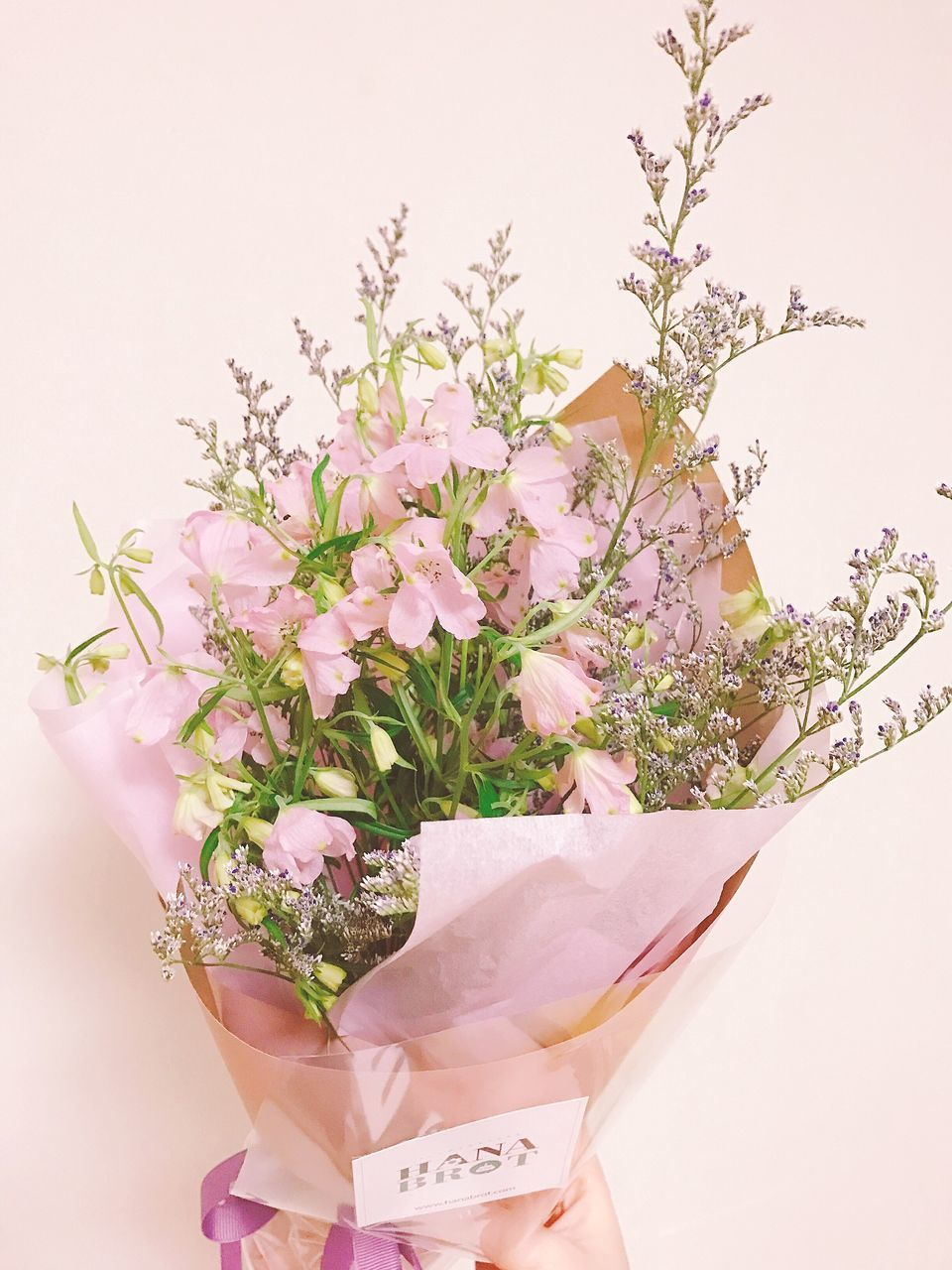 flower, pink color, nature, fragility, freshness, beauty in nature, growth, petal, plant, flower head, no people, studio shot, close-up, white background, day, bouquet, indoors, florist