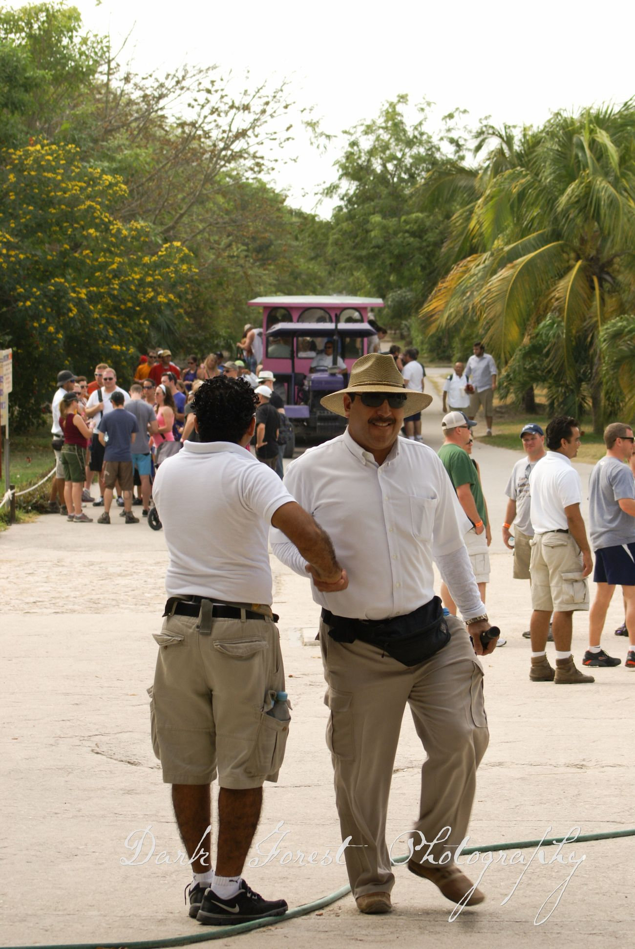 Team work Rear View Full Length Tree Adults Only Day People Mature Adult Adult Men Outdoors Large Group Of People Only Men Mexico Tulum , Rivera Maya. Ruins Tourist Attraction