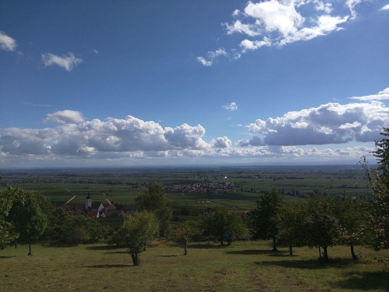 TakeoverContrast Landscape Pfalz Landschaft Nature Field Cloud - Sky Green Color First Eyeem Photo Outdoors Sky