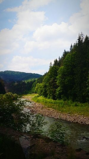 Ukraine закарпаття Гори Україна Ukraine Mountains My Travel Ukraine