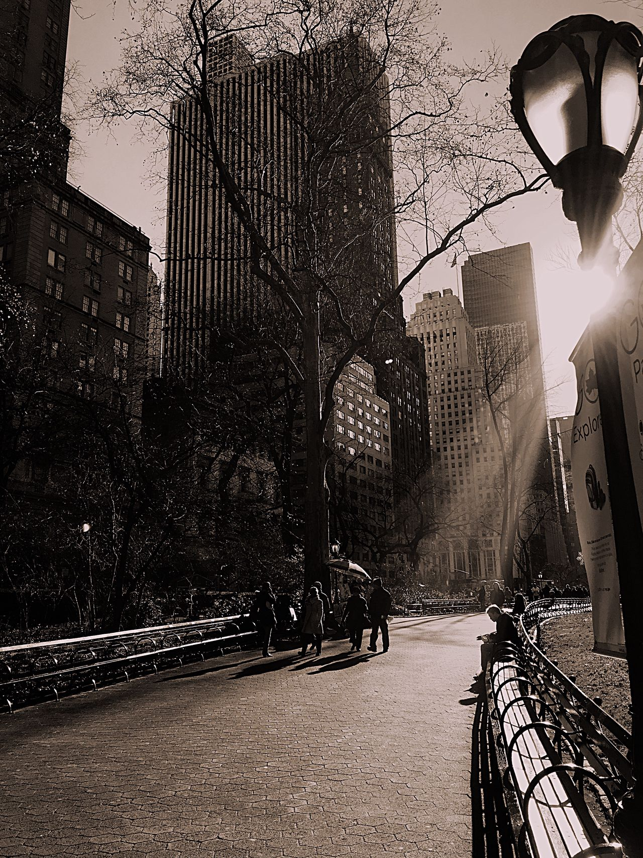 New York Central Park Cold Winter ❄⛄ Beautiful Day Greatest_shots Newyorkcity Blackandwhite Photography Black & White Beautifulcity Lovenewyork Winter Blackandwhitephoto Blackandwite Blancoynegro Black And White Photography