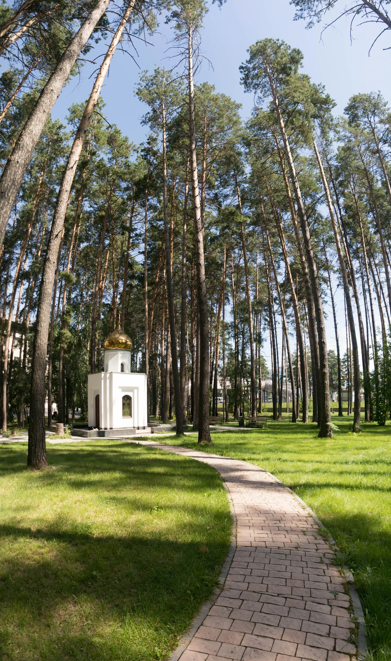 Часовня в честь архиепископа Луки, расположенная на территории клиники Мешалкина. Посвящается всем медикам-кардиохирургам. Мешалкин часовня Новосибирск Meshalkin Forest Landscape_Collection Pine Trees Nature