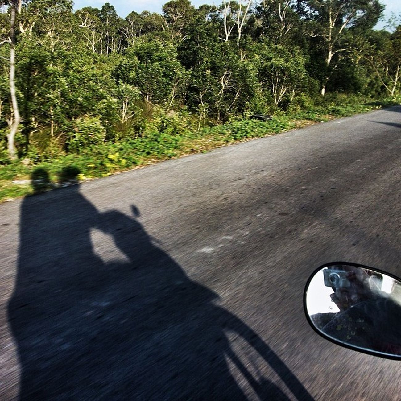 Bike Shadow Road Rearviewmirror jungleroad free