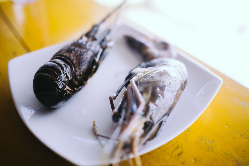 Beautiful stock photos of lobster, Close-Up, Food, Food And Drink, Freshness