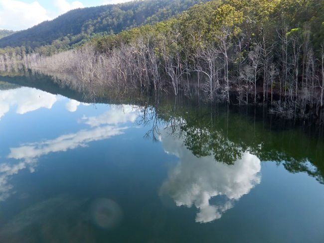 The upper intake of the Hinze dam on the Gold Coast Australia. Beauty In Nature Cloud - Sky Day Growth Lake Nature No People Outdoors Reflection Scenics Sky Tranquility Tree Trees Water