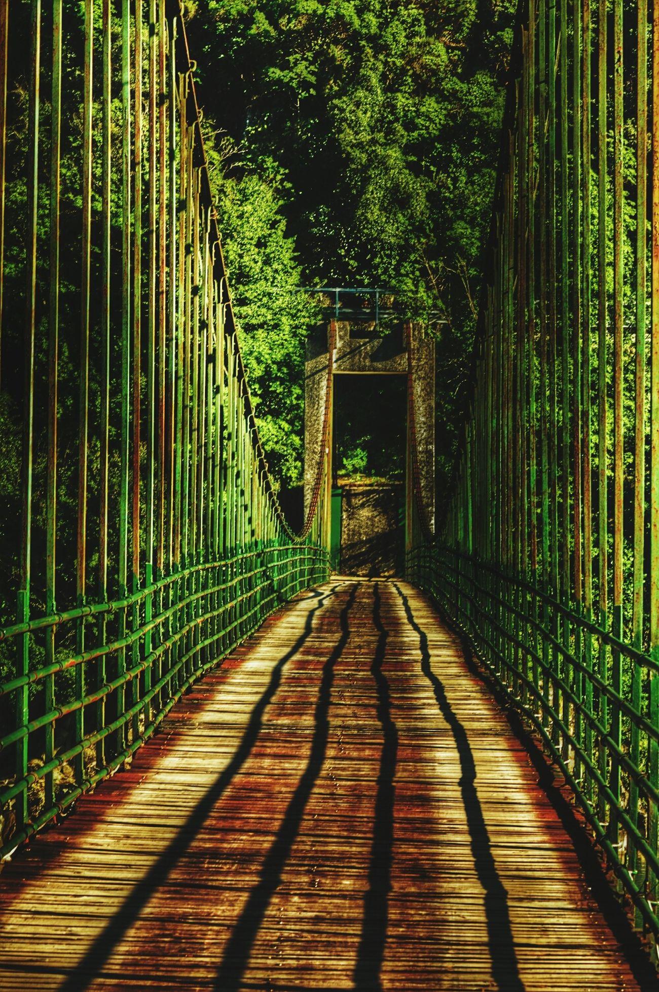 1 agosto Bridges Liguria Primo Agosto