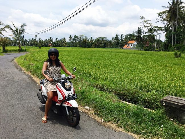 The Drive the ride, paddy fields, bike