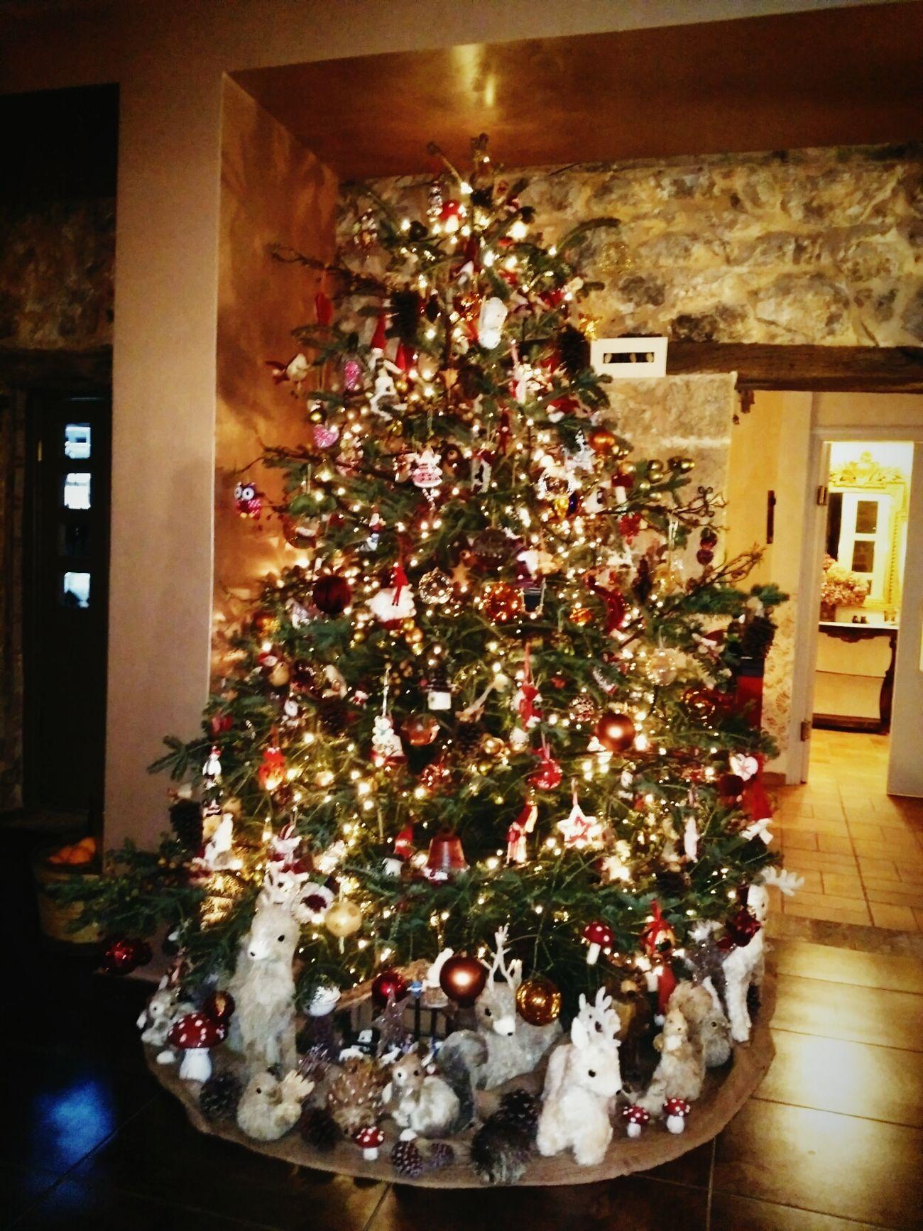 Christmas Nemea
