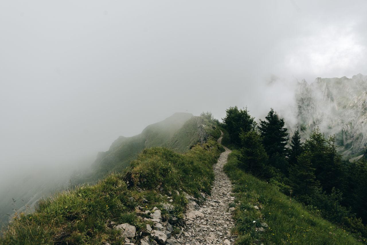 Switzerland Mountain range clouded with fog Beauty In Nature Day Fog Foggy Grass Hazy  Landscape Mist Mountain Mountain Range Nature No People Outdoors Scenics Sky Tree