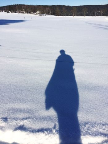 Shiluette in the Snow Shadow Winter Snow Cold Temperature Sunlight Nature Focus On Shadow
