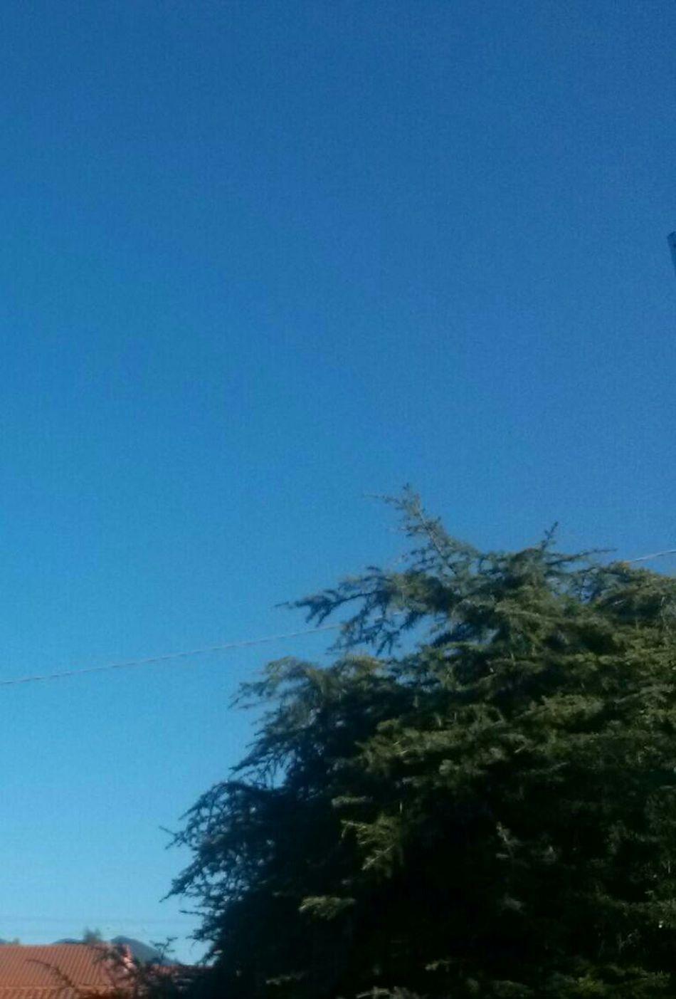 Cielo D'inverno Winter Sky