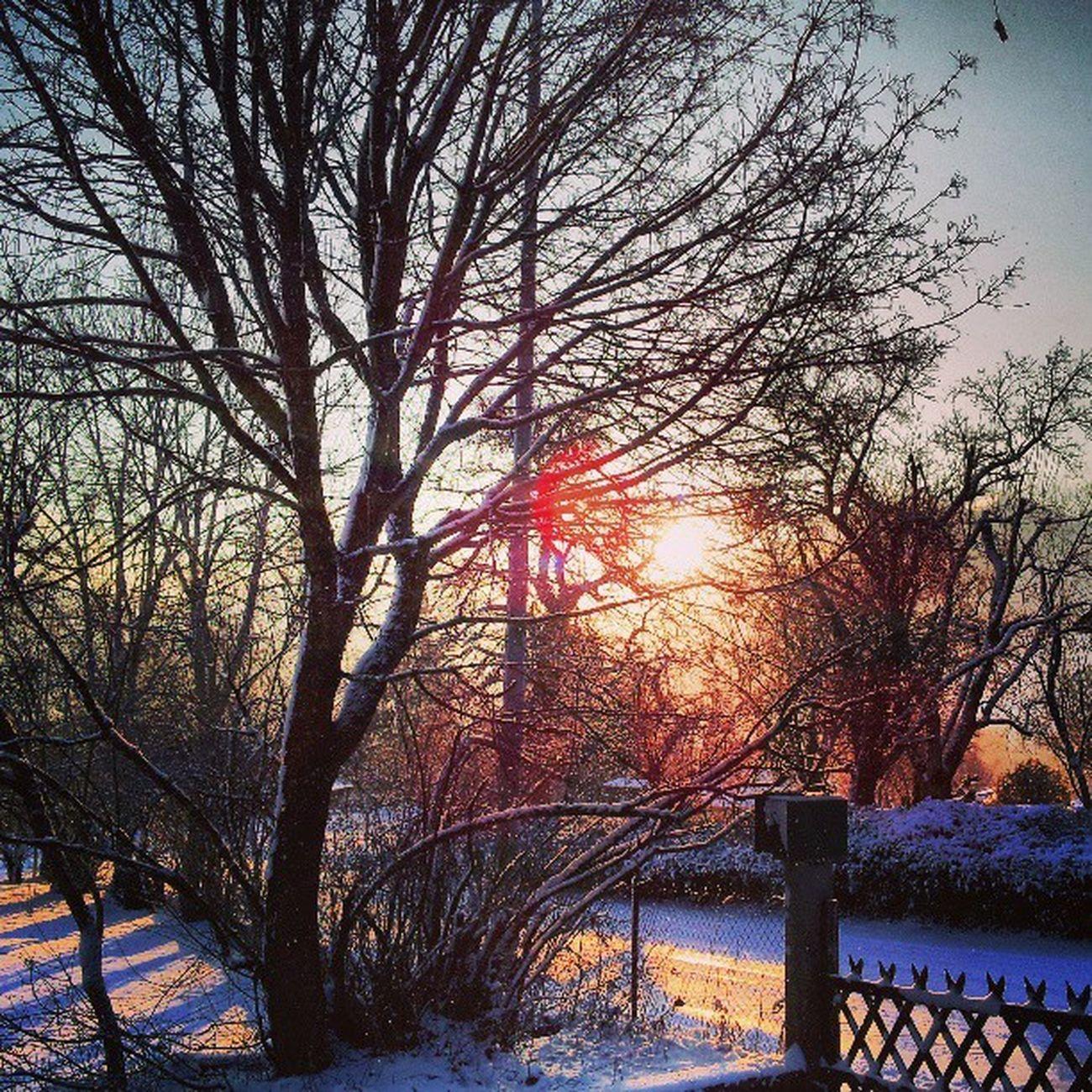 Leverdesoleil Neige Snow Hautesavoie jaimemaregion winter hiver matin paysage