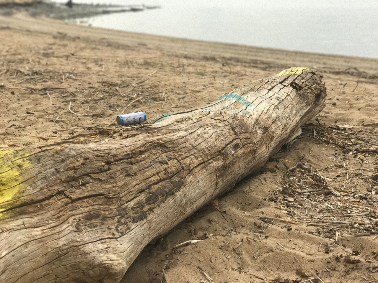 Sand Beach Wood - Material Day Water Damaged Tranquility Focus On Foreground Outdoors No People Nature Close-up