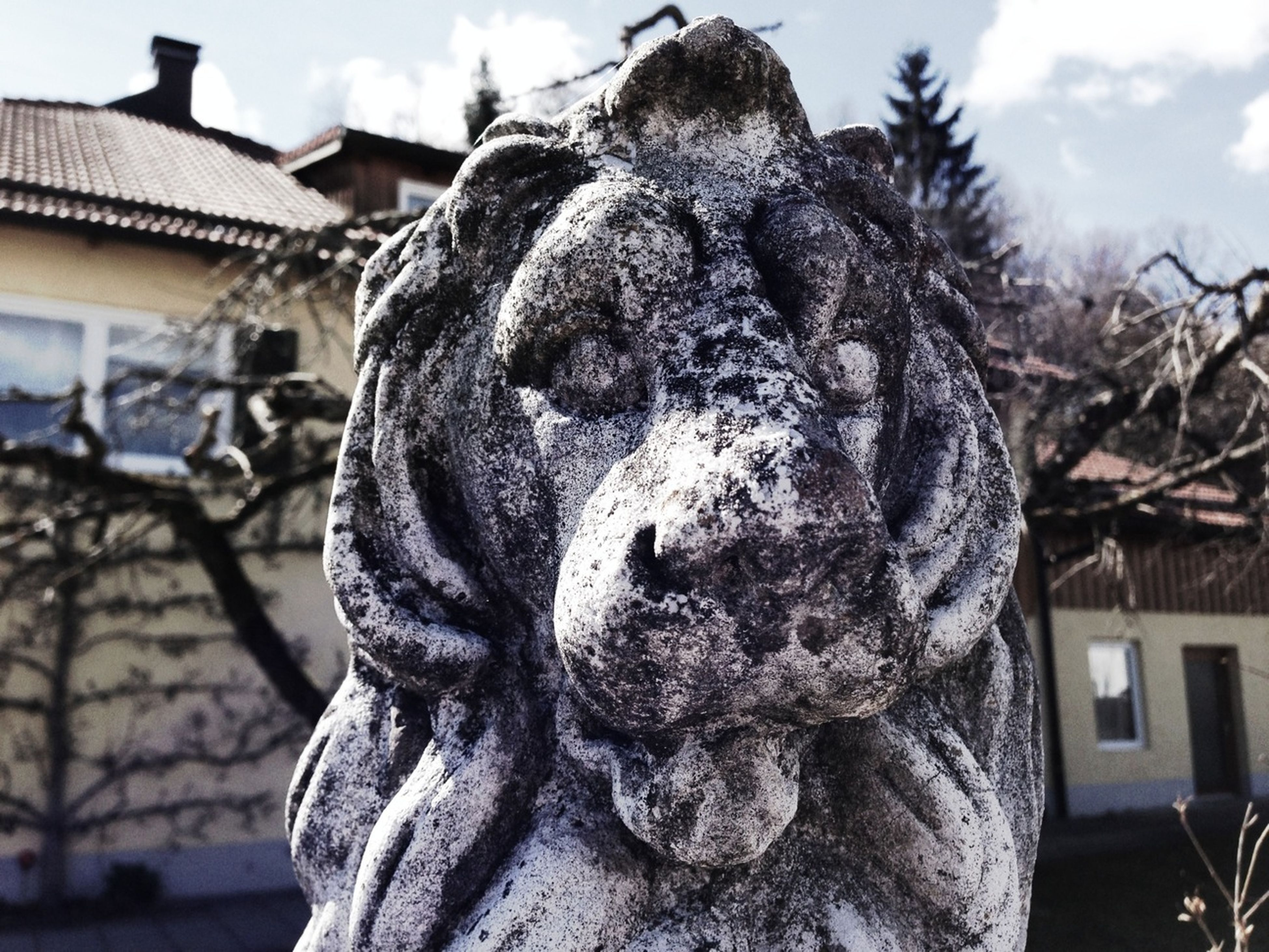 statue, sculpture, human representation, art and craft, art, creativity, building exterior, built structure, architecture, carving - craft product, focus on foreground, sky, craft, tree, animal representation, low angle view, religion, stone material