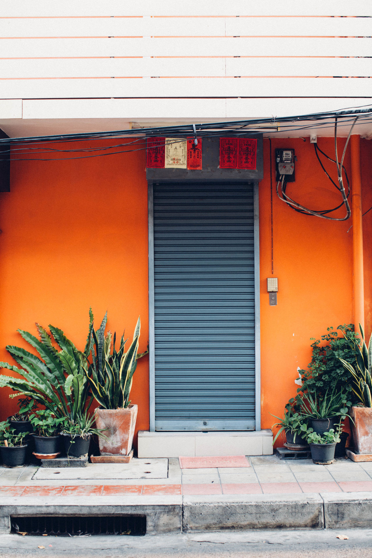Architecture Bright Bright Color Bright Colors Building Exterior Built Structure Day Door No People Orange Outdoors Plant Potted Plant Street Street Photography Streetphotography