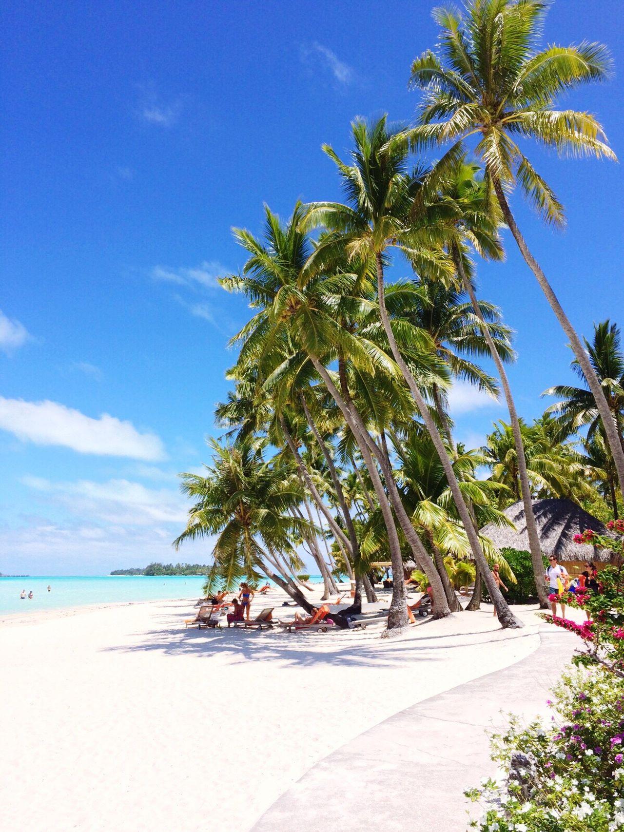 Beautiful stock photos of bora bora, Beach, Beauty In Nature, Blue, Cloud