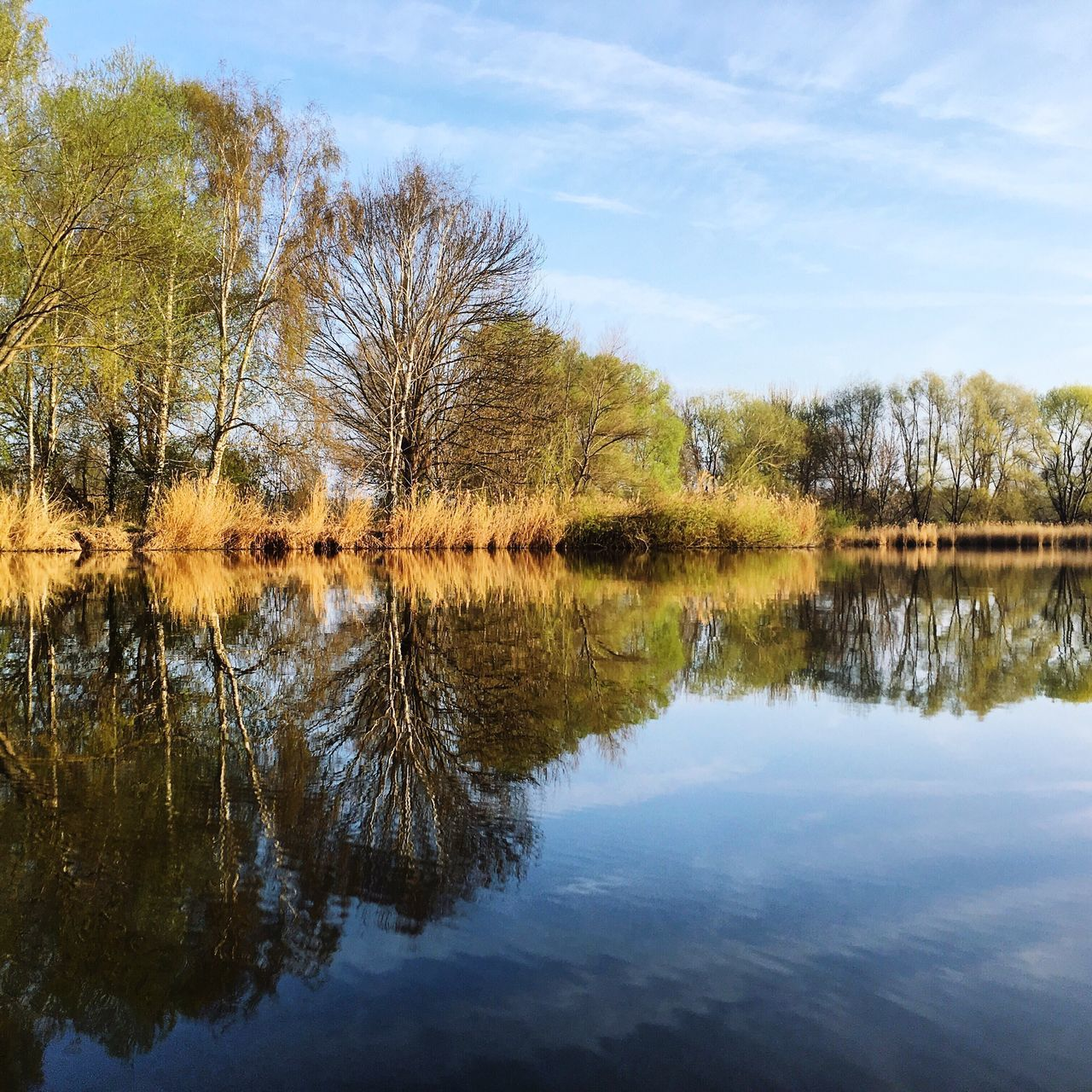 reflection, water, lake, tranquil scene, sky, tranquility, scenics, nature, tree, beauty in nature, outdoors, waterfront, cloud - sky, standing water, day, no people, symmetry