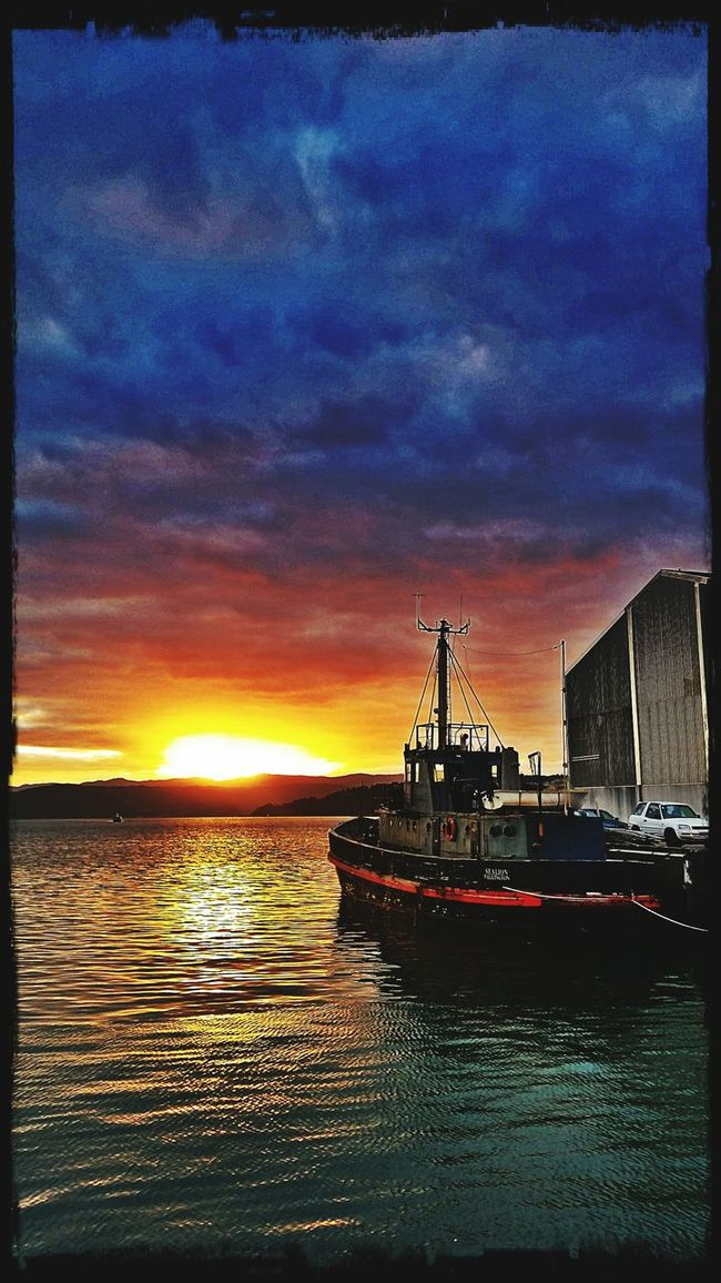 Today's Sunrise Good Morning Morning Light Morning Sky Harbour View Tugboat
