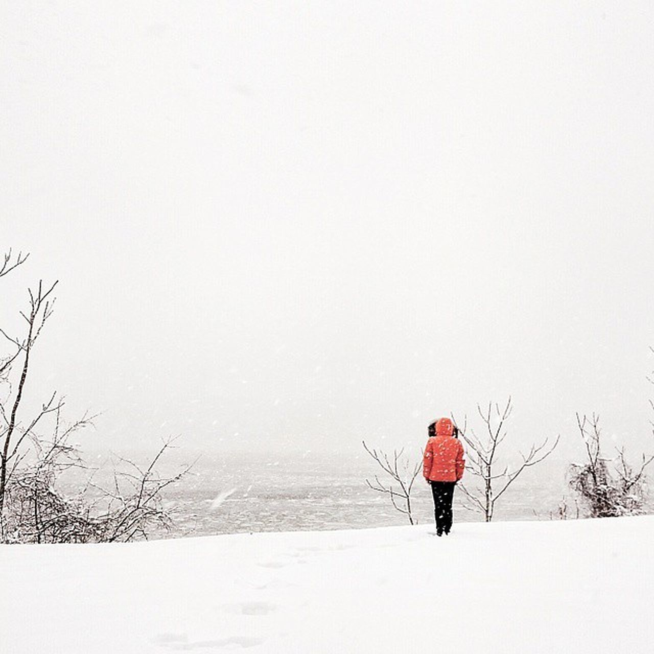 ice floe at hudson river Juno is back ❄ Negative Space The Best Of New York New York City Cityscapes NY Newyork NYC Streetphotography Newyorkcity Street Photography Snowing Snow Urban Street New York It's Cold Outside Winter