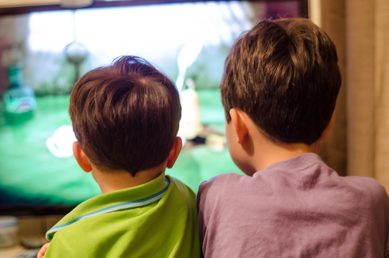 Looking at two young brothers from behind as they watch television. Brothers Child Childhood Entertainment Evening Headshot Indoors  People Real People Rear View Television Togetherness Tv Two People Watching Television Watching Tv Sitting Sat Down Young