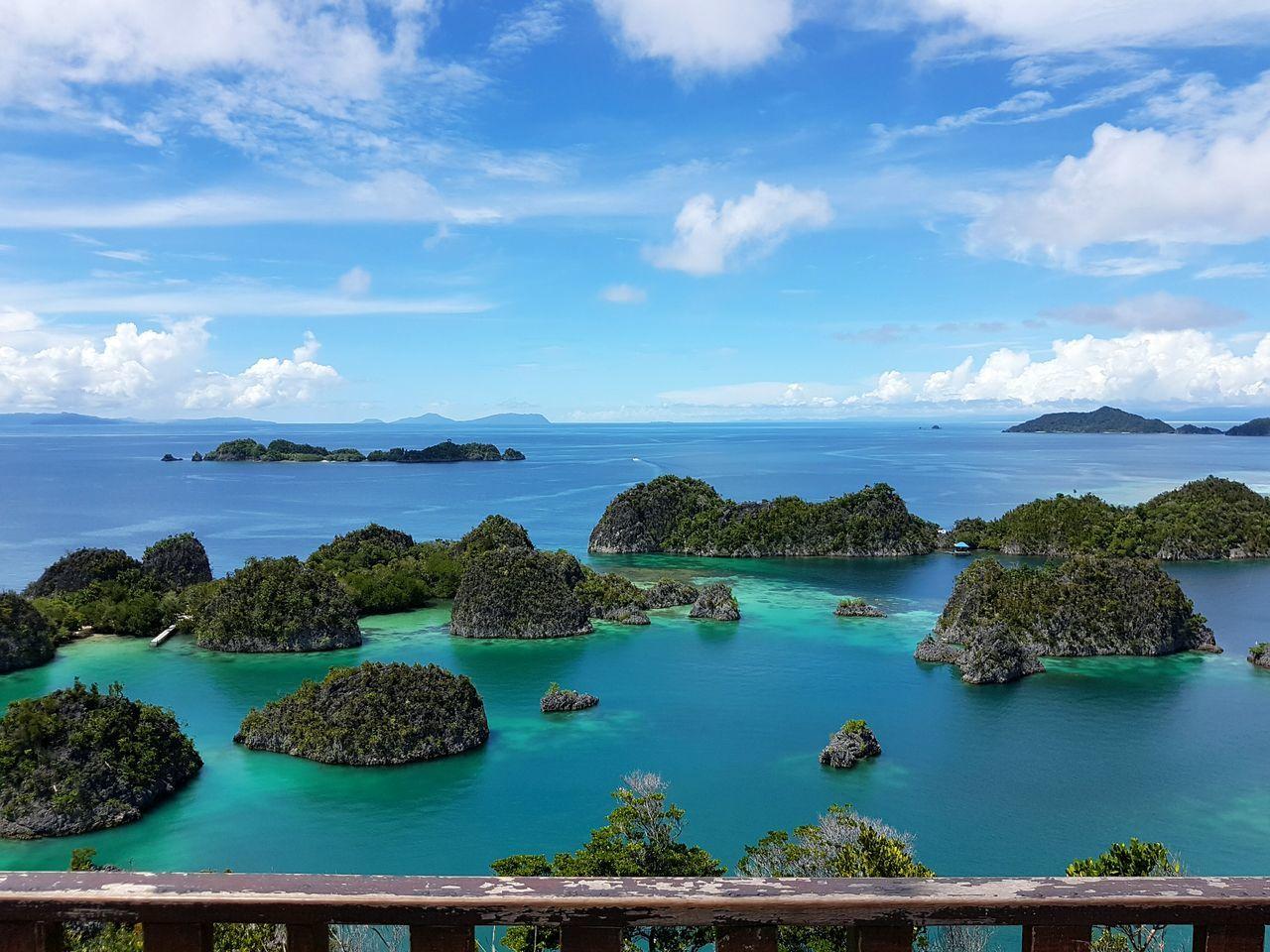 EyeEm Selects Sea Water Horizon Over Water Tree Island Sky Nature Pianemo_Island Rajaampat Papua Indonesia