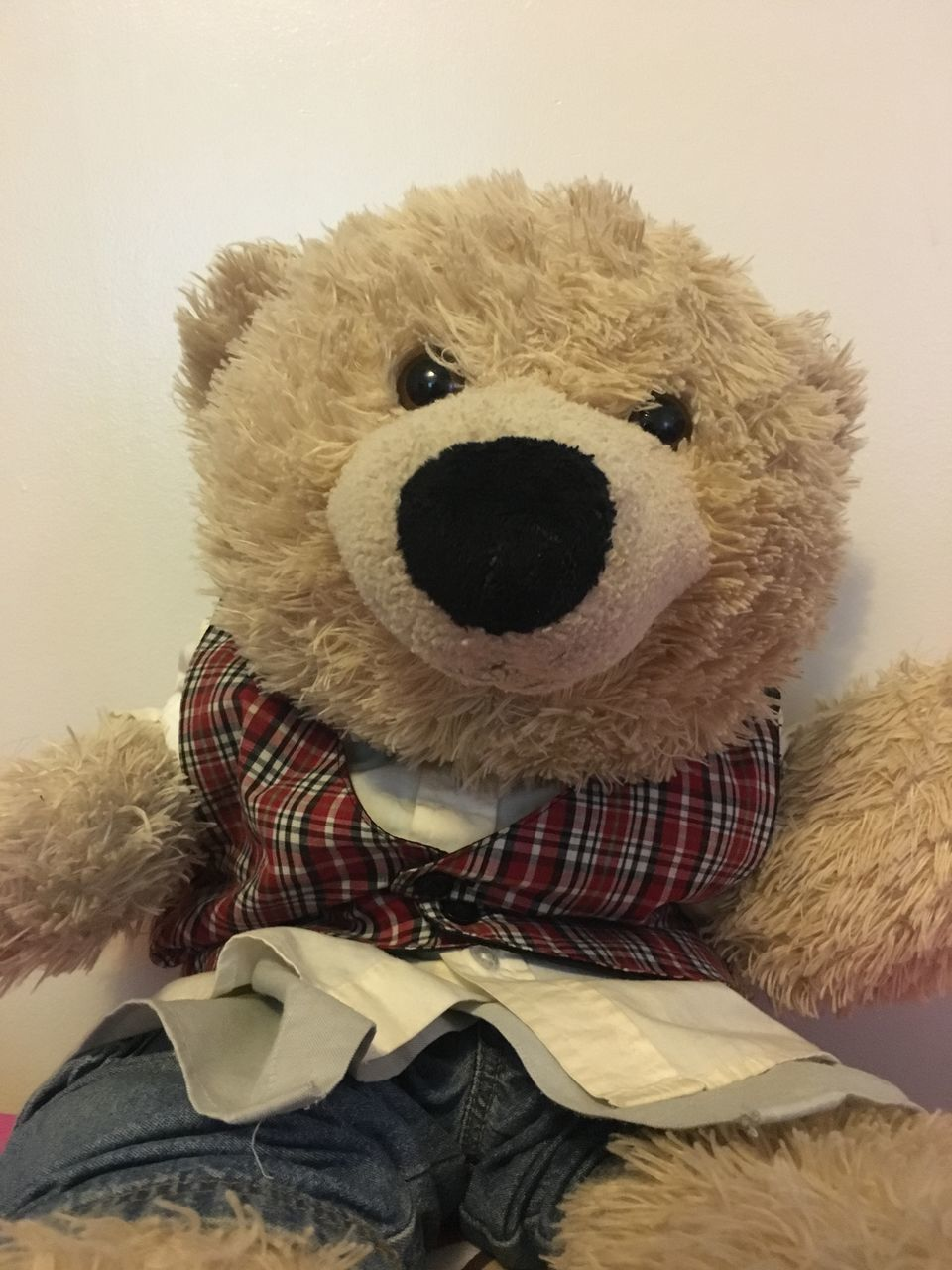 teddy bear, stuffed toy, toy, childhood, indoors, stuffed, no people, close-up, mammal, day