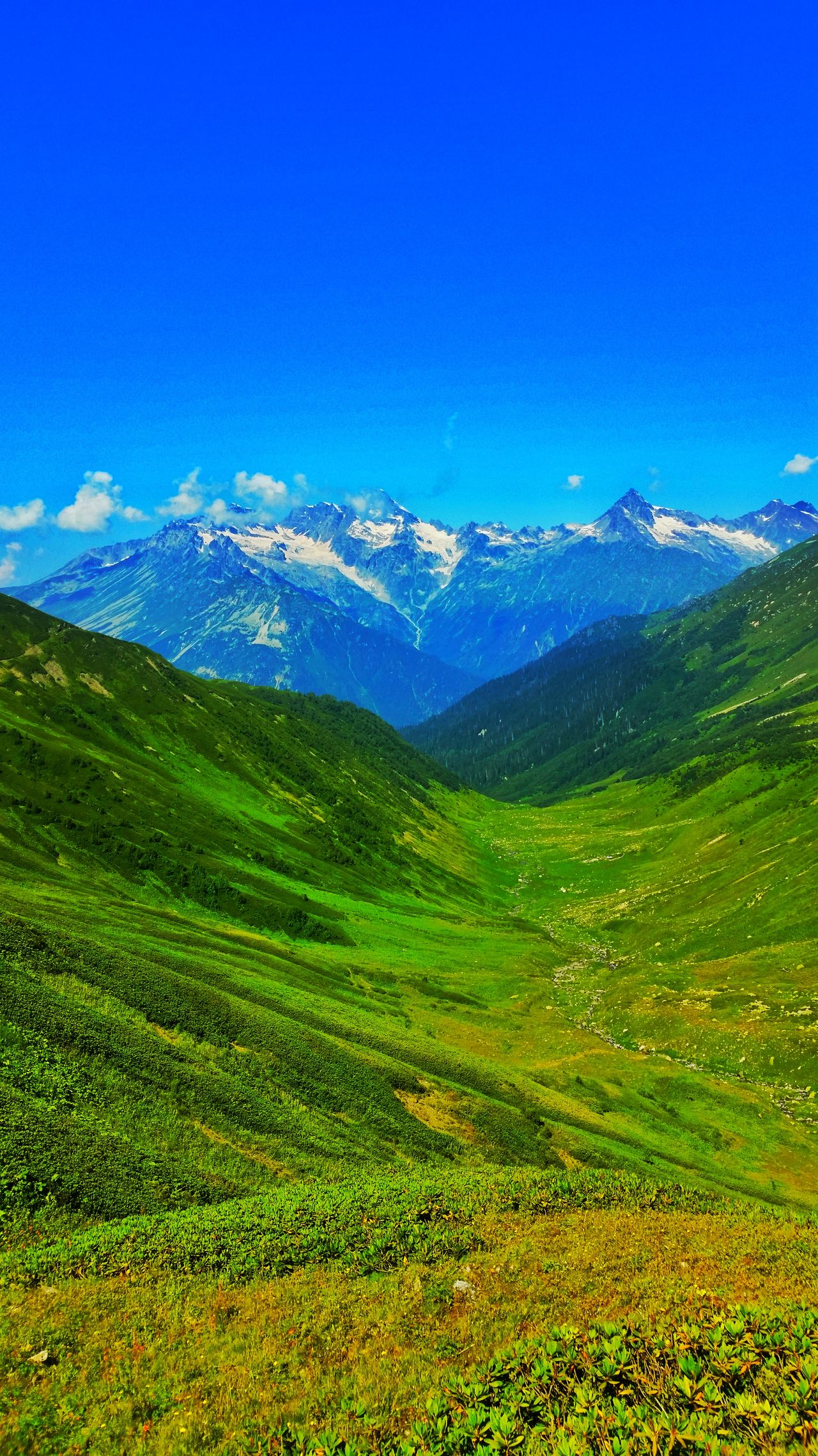 Mountain Scenics Green Color Mountain Range Nature No People Beauty In Nature Landscape Freshness Day Pinaceae Tranquility Travel Destinations Outdoors Grass Sky Clear Sky Beauty In Nature Nature Green Color Grass