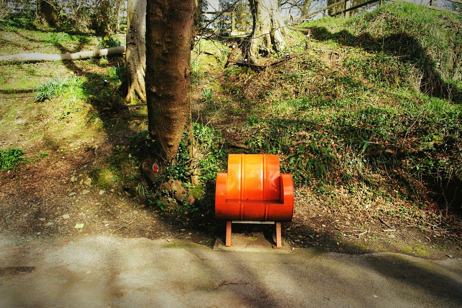 Fine Art Photography This Week On Eyeem Eyeem Best Shots Pattern, Texture, Shape And Form The Secret Spaces Art Is Everywhere Beauty In Nature Trees Color Splash High Angle View Day Light And Shadows Forest Orange Color Seat