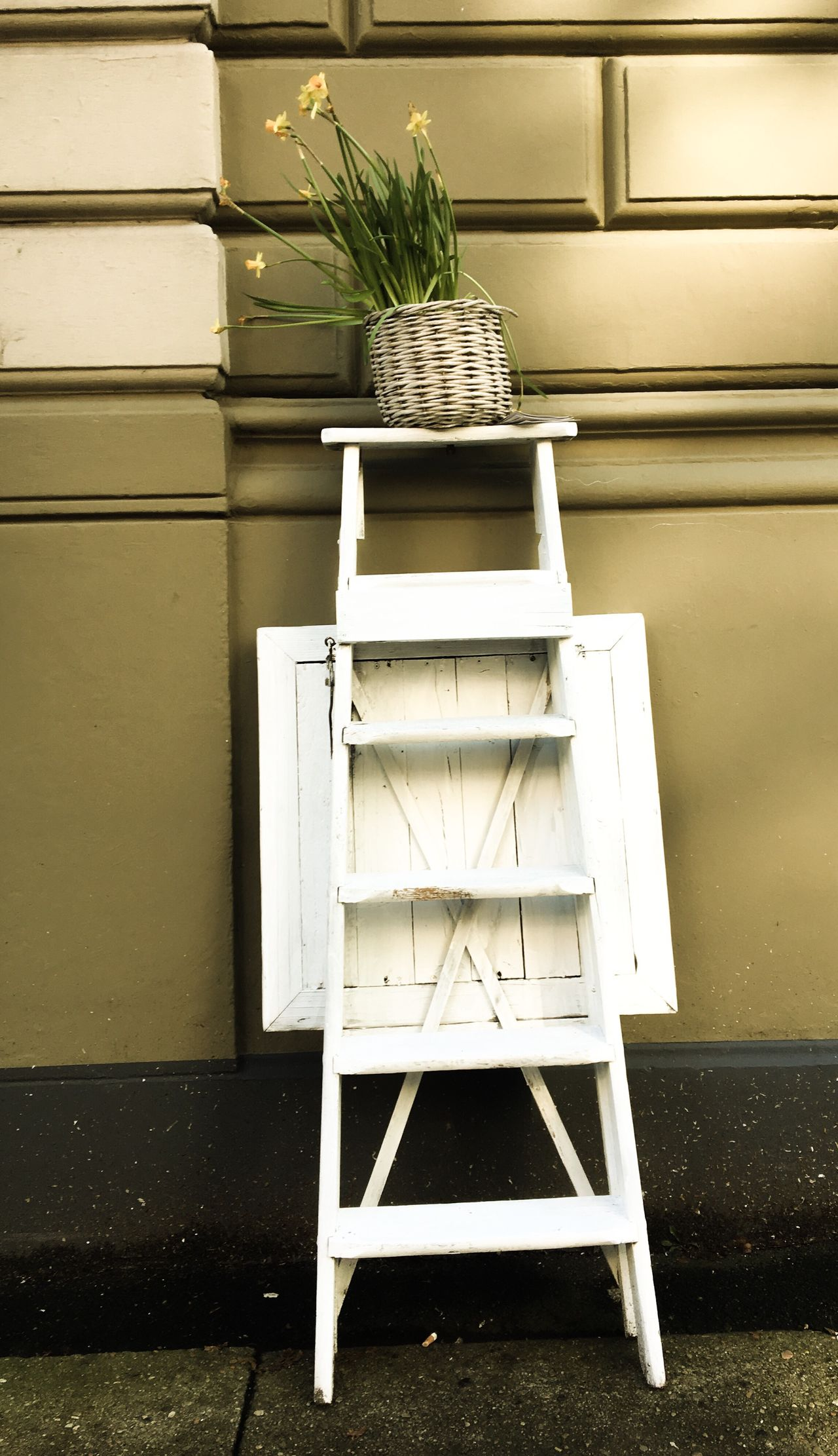 City Flowers No People Chair Table Plant Day Outdoors Architecture City Spring Flowers White Ladder Retro Green Wall Façade Citylife Flower Stand