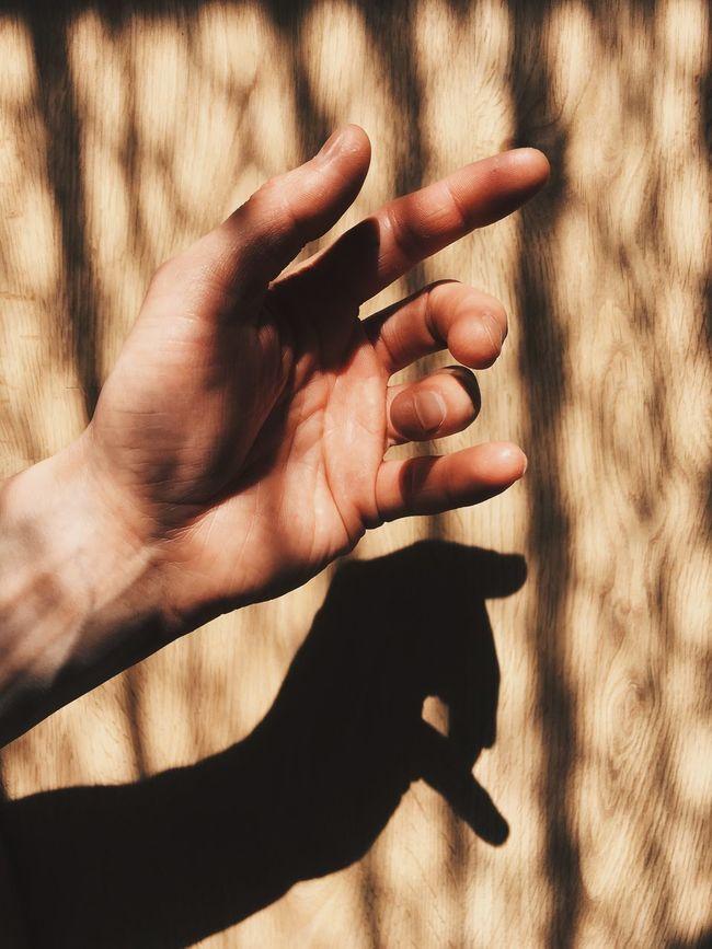 Oddity... Taking Photos Enjoying Life Hello World Vscocam Eye4photography  ShotOnIphone IPhoneography Fun Shadow Relaxing Shadows & Lights Shadows My Favorite Photo