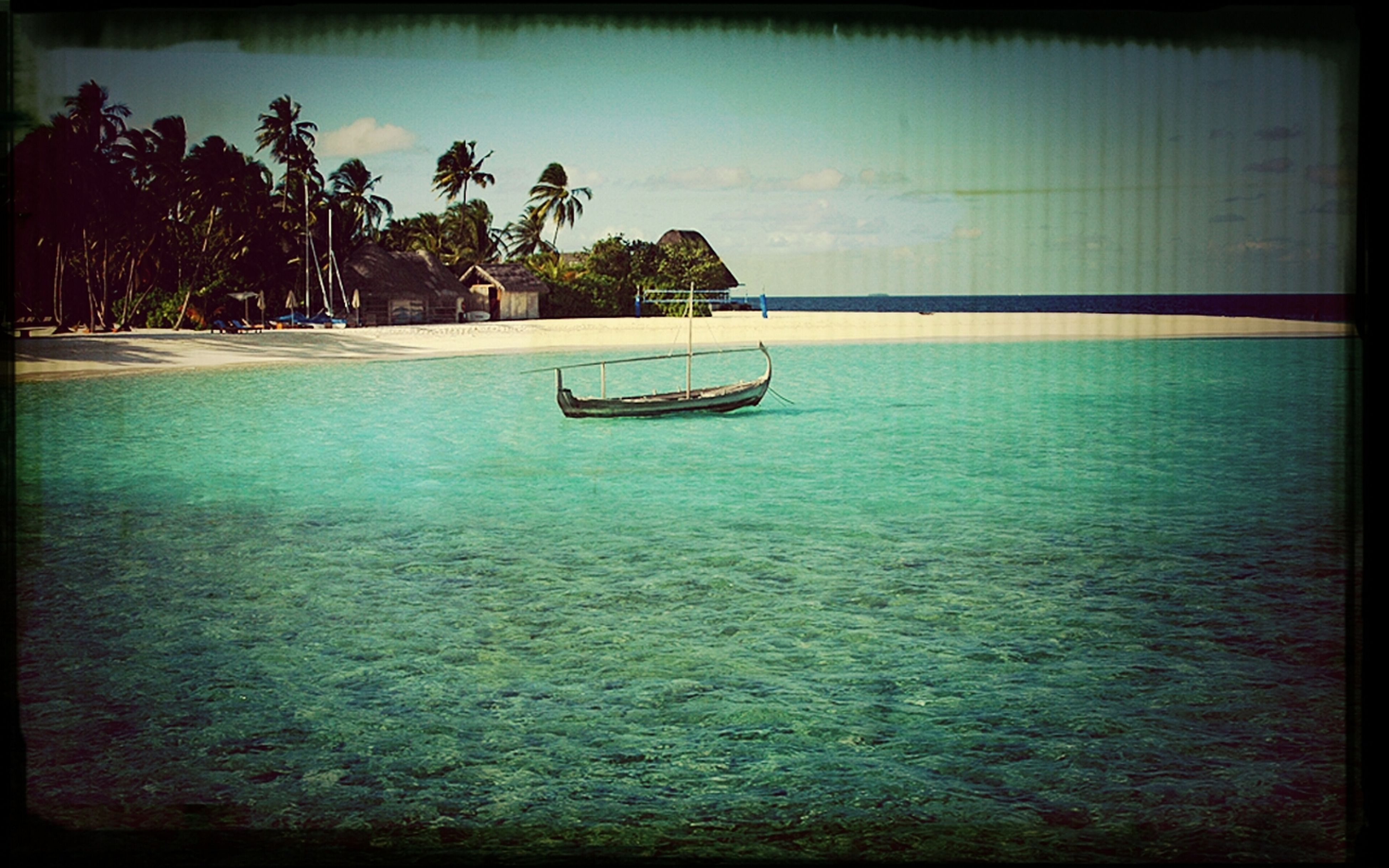 sea, water, horizon over water, palm tree, tree, tranquil scene, tranquility, sky, beach, scenics, beauty in nature, transfer print, nautical vessel, nature, auto post production filter, boat, shore, waterfront, idyllic, calm
