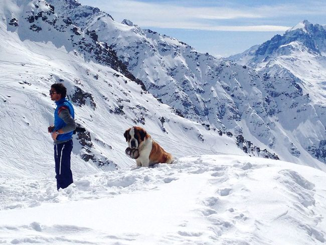 Snow Cold Temperature Mountain Snowcapped Mountain Tourist Vacations Dog Rescuer Rescuers Rescue Lifestyles Non-urban Scene Winter Mountain Range White Color Tourism Travel Beauty In Nature Alps Switzerland Verbier Safeguard Safety Safe