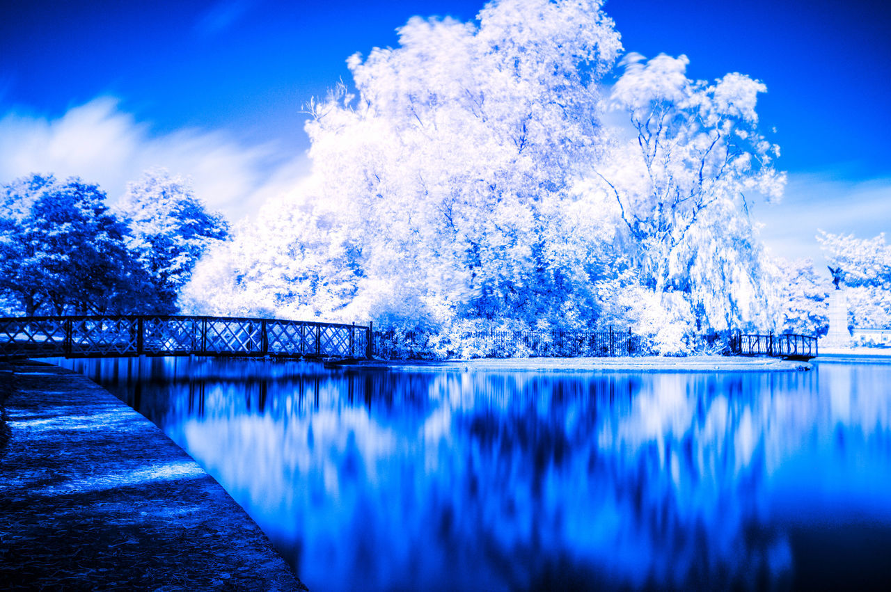 blue, water, nature, beauty in nature, outdoors, no people, scenics, tranquil scene, sky, tranquility, day, cold temperature, winter, snow, tree