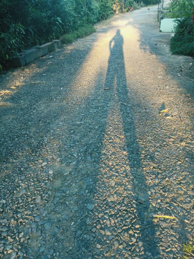 shadow in afternoon That's Me Daydreams♡ Light Village Life