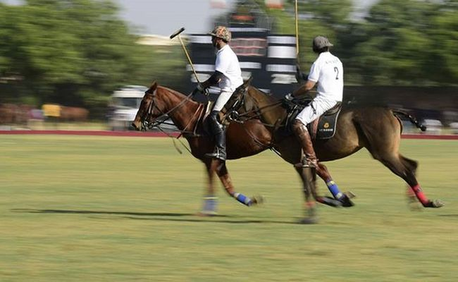 Jodhpur Bluecity Jopolo Polo Igersjodhpur Igersjaipur Click_india_click Wwim13 WWIM13Jodhpur Likeforlike Likeforfollow Followme