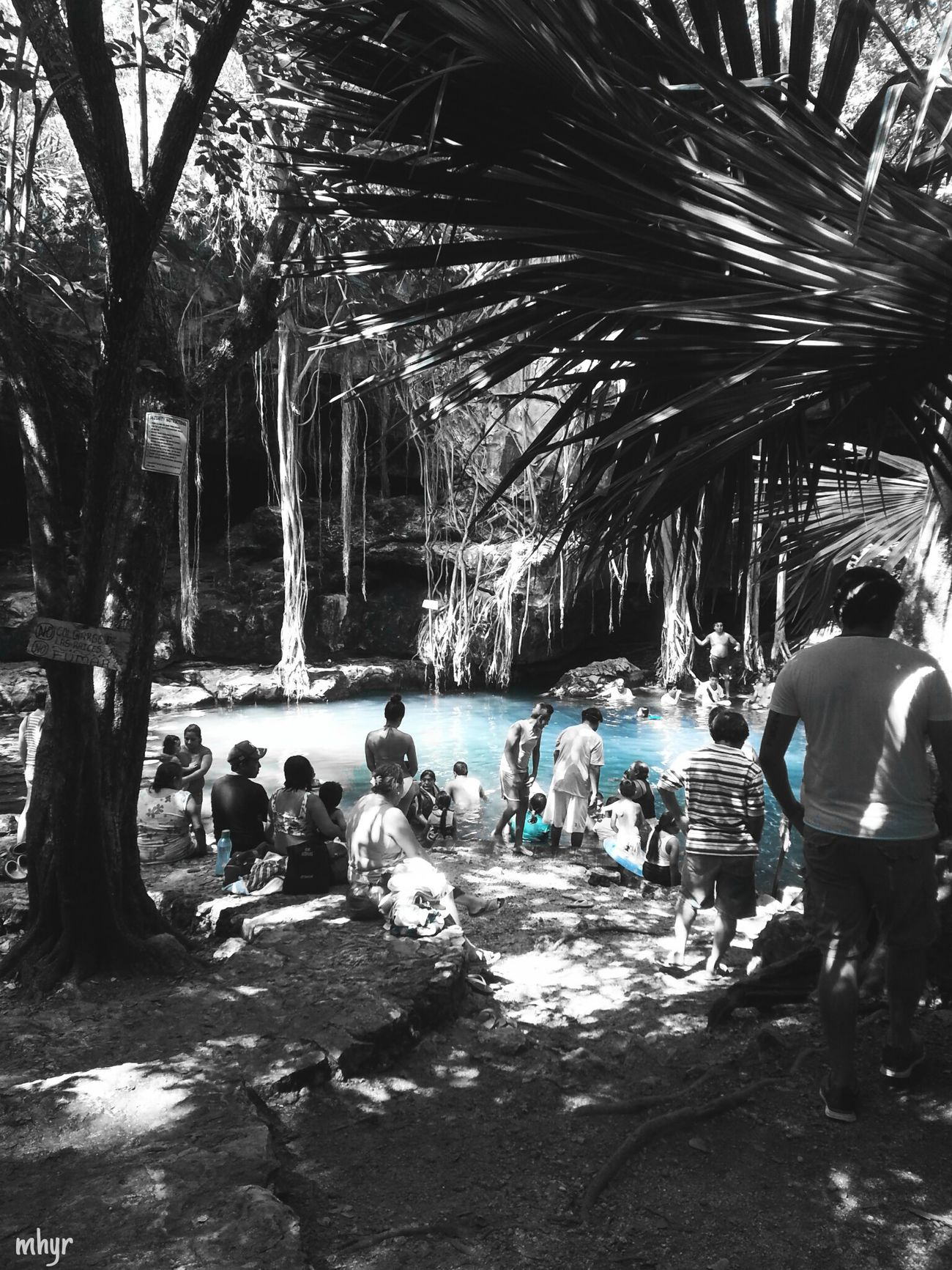 Nature Life Places Happiness Photography Colorsplash Lifestyles Relaxation People Waterhole Mexico Yúcatan Cenotes Day Large Group Of People Real People Nice Life Is Good Simple Life Best EyeEm Shot Picsart_family Plants 🌱 Beauty In Nature Picsartrefugees Naturelovers