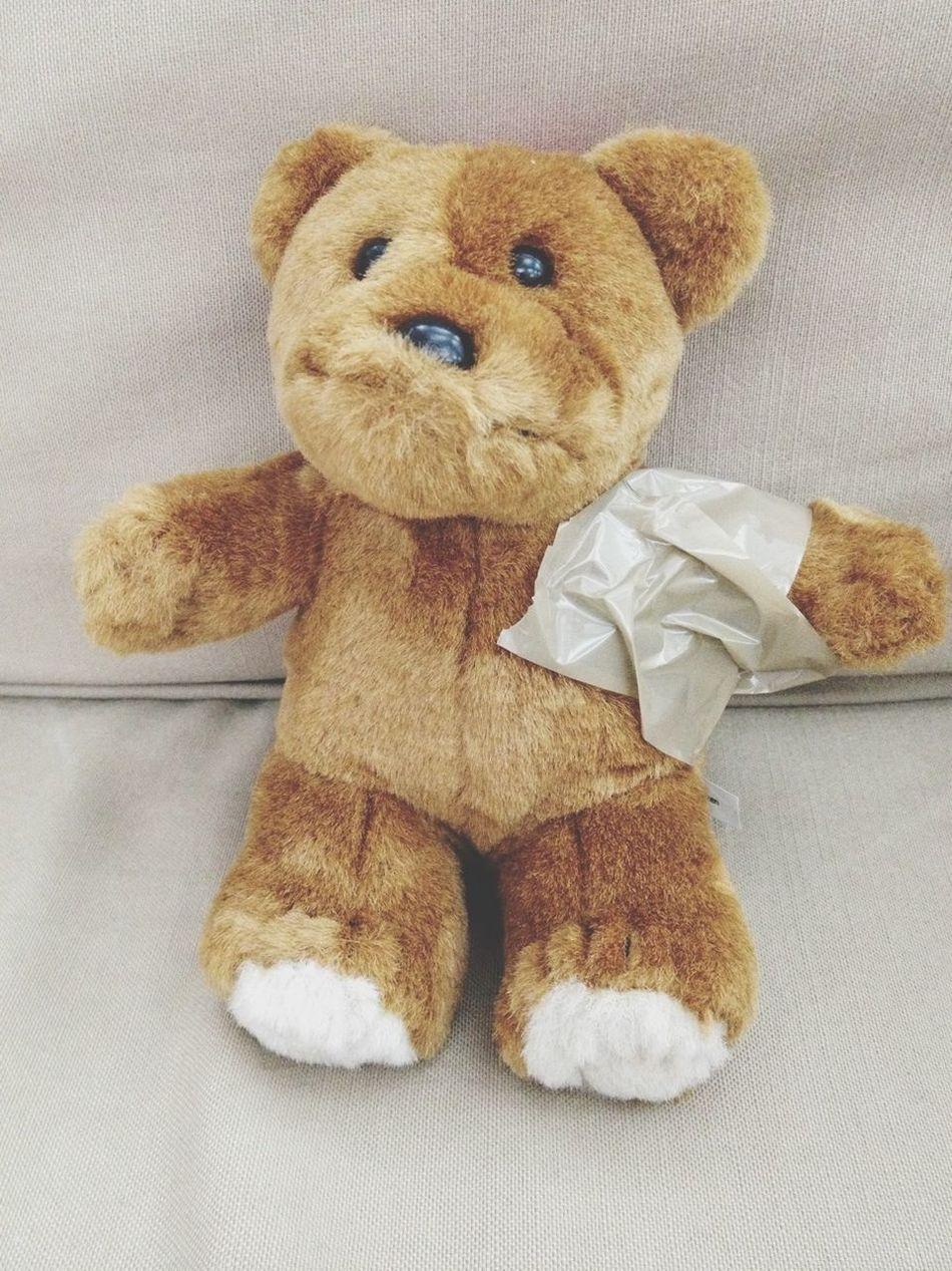 Beautiful stock photos of teddy bear, NULL