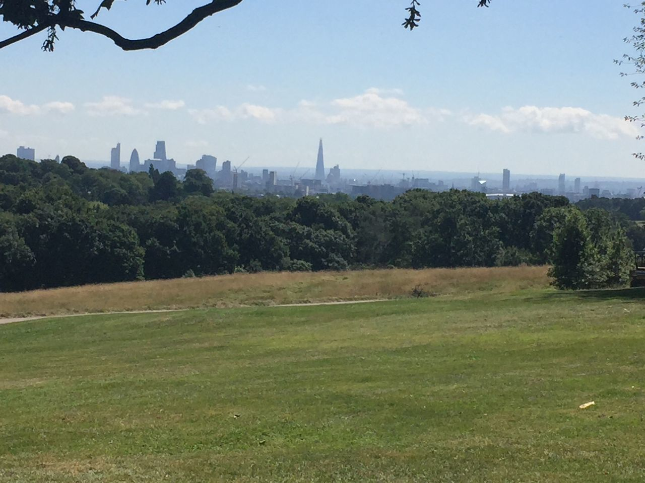 The sun spread over Hampstead Heath on a summers day I will always remember Hampstead Heath Landscape Urban Landscape