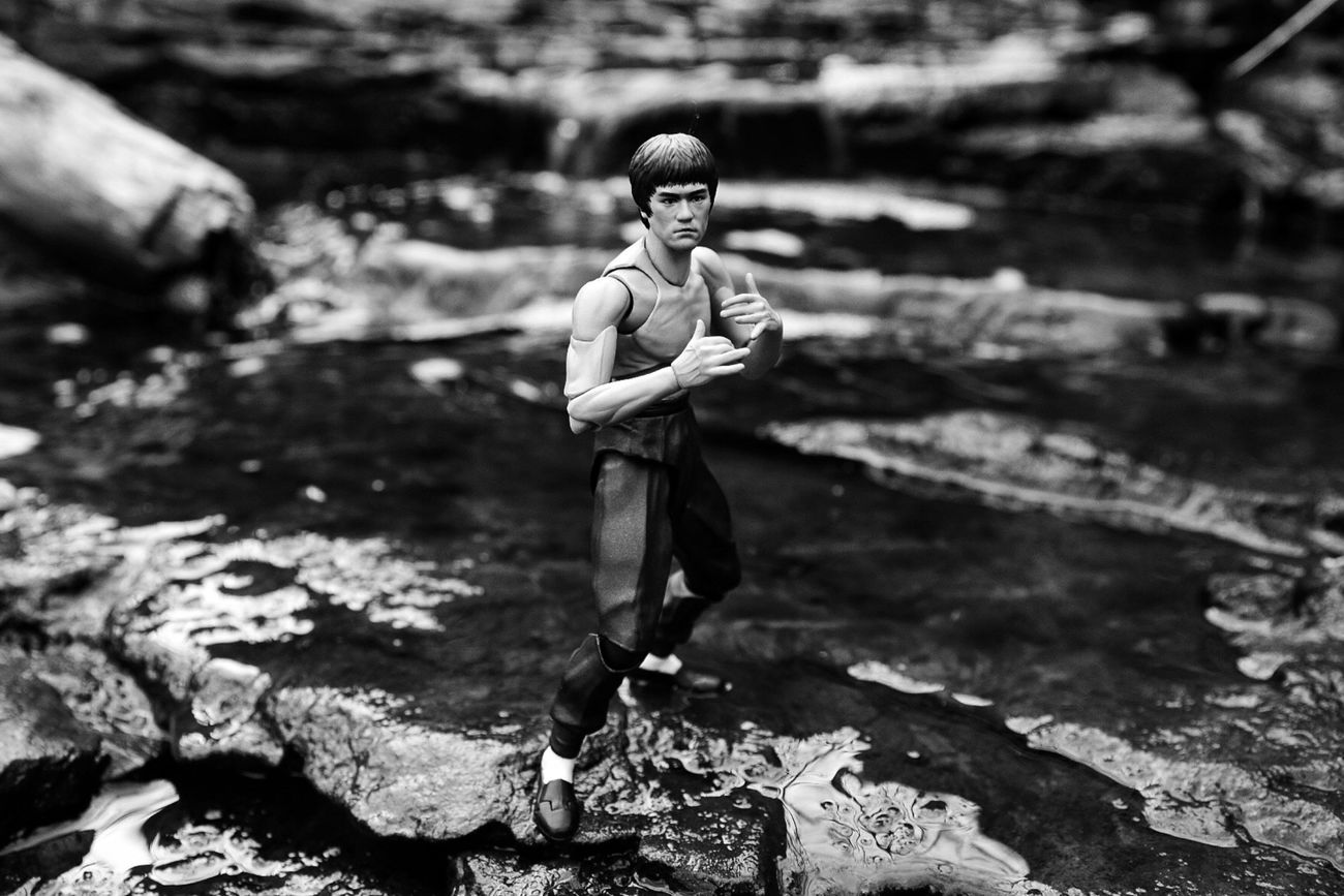 Defeat is a state of mind; no one is ever defeated until defeat has been accepted as a reality. Brucelee SHfiguarts Shfiguartsphotography Sigma Sigma1750 Nikond7000 Blackandwhite Bnw Toyphotography Toysoutdoors Outdoortoyphotography Blackwhitetoyphotography