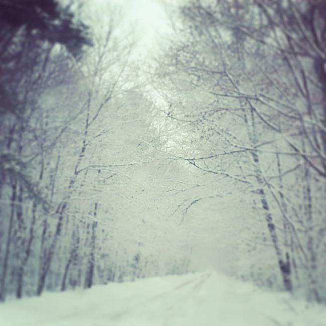 Snow Minnesnowta Ilovewinter